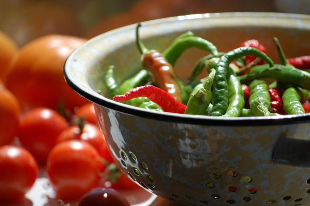 Backyard Garden Chili Peppers